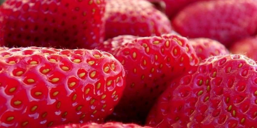 Foto van aardbeien | Sxc