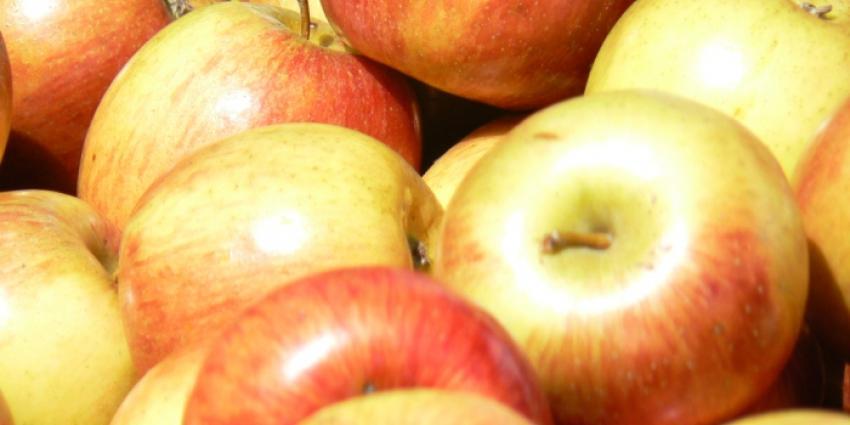 Foto van appels   MV