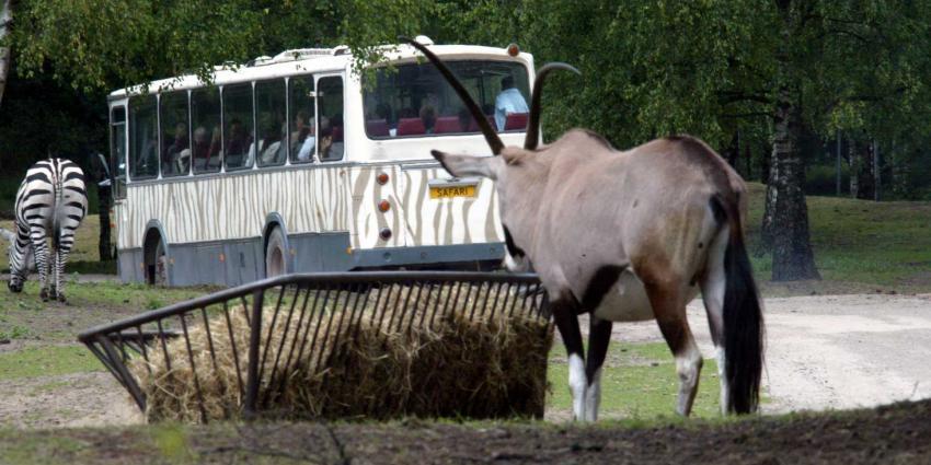 foto van Safari Park Beekse Bergen   fbf