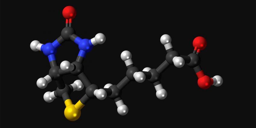 Het nut van biotine / vitamine b8
