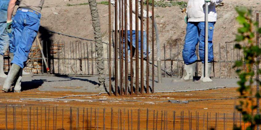 bouw-cement-struik