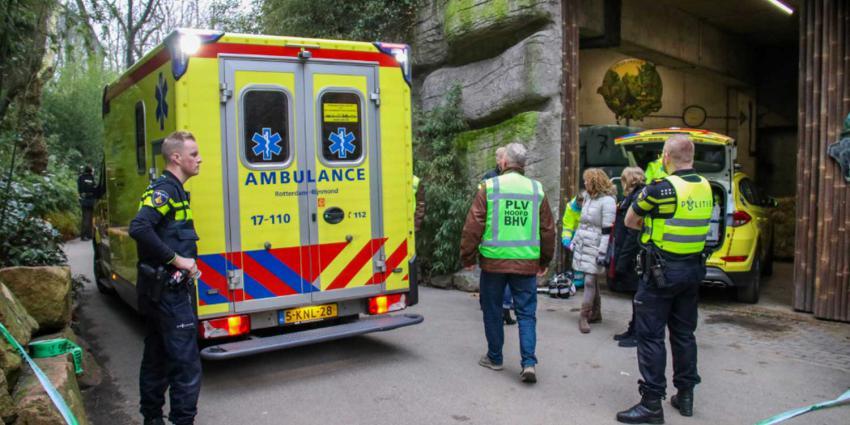 diergaarde-ambulance