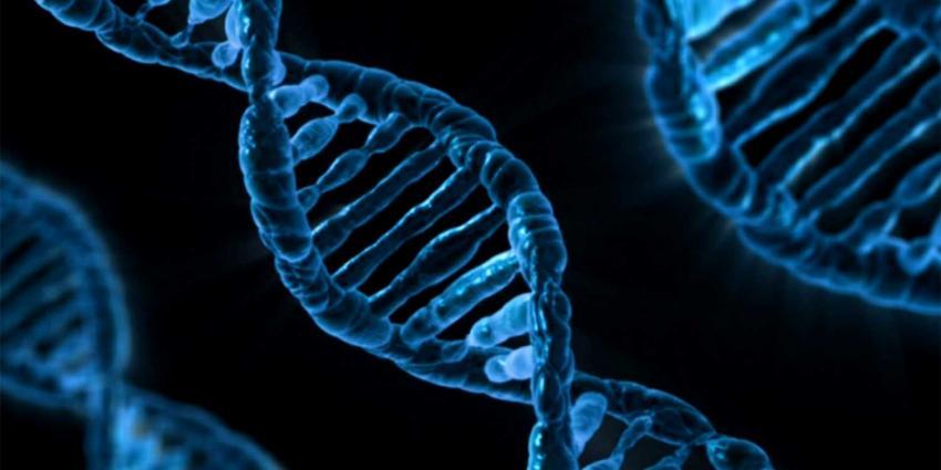 Nieuwe DNA-sequencing maakt verloop acute leukemie beter voorspelbaar