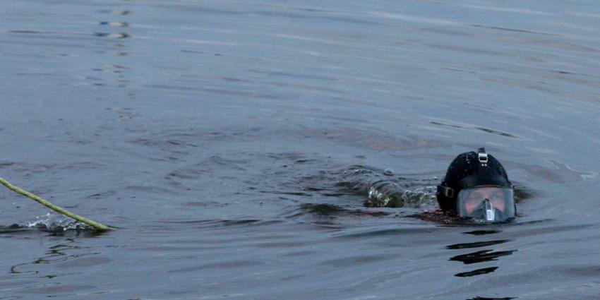 duiker in het water