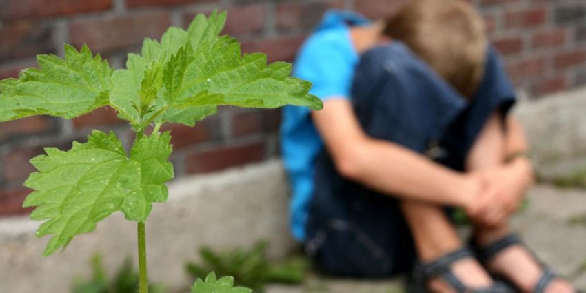 Fikkie stoken door kinderen loopt uit de hand