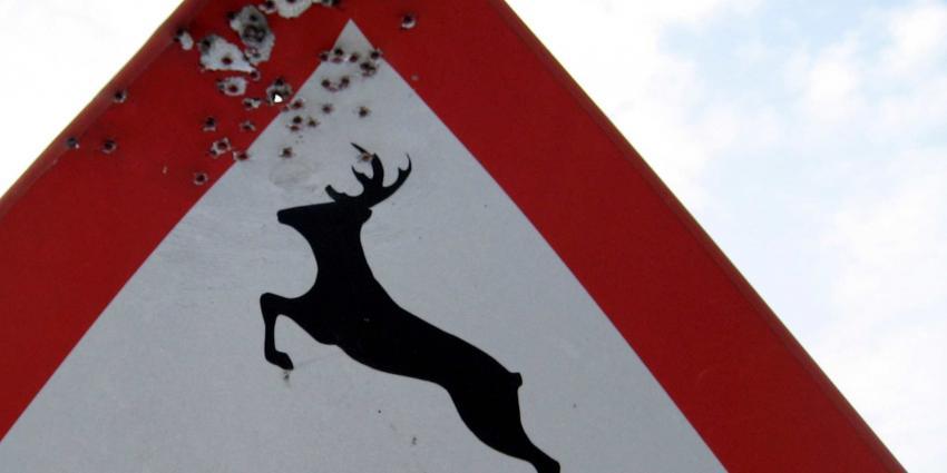 Boswachters krijgen het aan de stok met activisten na doden edelhert