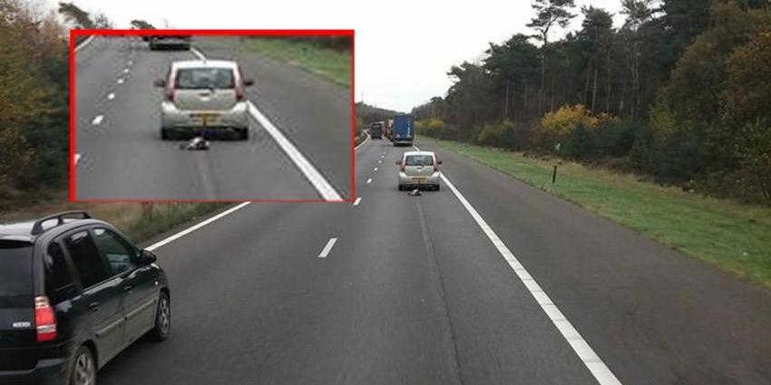 Hond achter de trekhaak over A1 lijkt grap