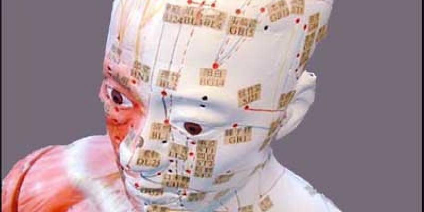 Foto van hoofd schedel model | Archief EHF