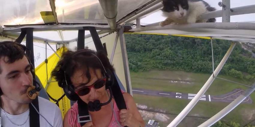 Geen kroegpraat, kat kruipt uit vleugel ultralight vliegtuigje na opstijgen