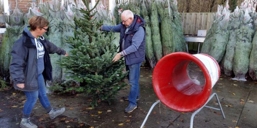 Meer mensen hebben al kerstboom in huis