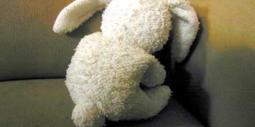 Foto van konijn kind kindermishandeling | Archief EHF