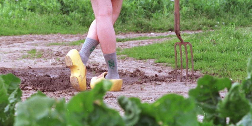 foto van landbouw | fbf