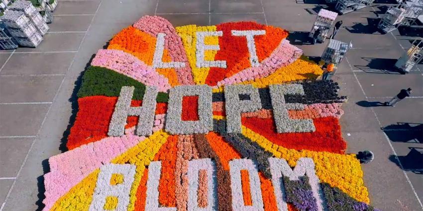 let-hope-bloom