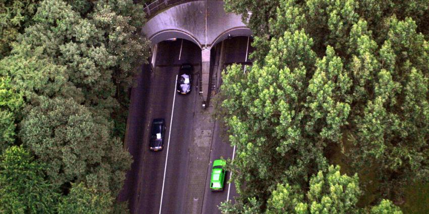 Foto van Maastunnel auto | Archief EHF