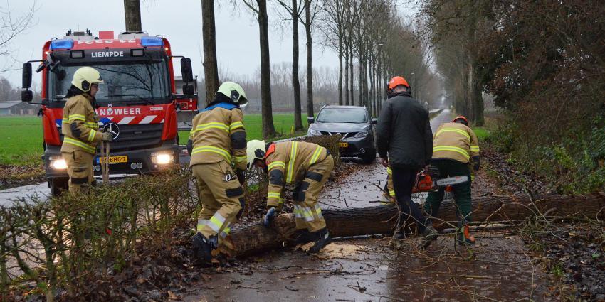 Brandweer maakt omgevallen boom klein