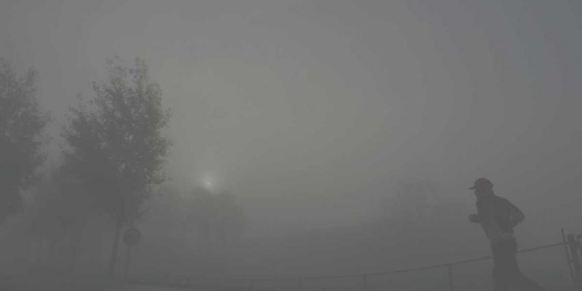 KNMI waarschuwt voor dichte mist in Midden-Nederland
