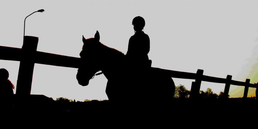 Slaat gezochte paardenmishandelaar opnieuw toe