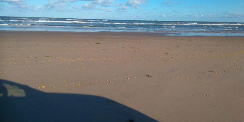 Groot deel stranden Noord-Holland vervuild met paraffine