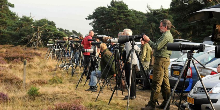 PvdA en D66 pleiten voor nieuwe Nationale Parken