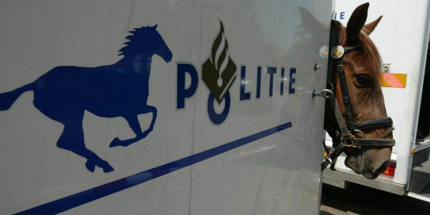 Agenten en politiepaarden gewond bij ongeregeldheden voetbalwedstrijd De Graafschap – Ajax