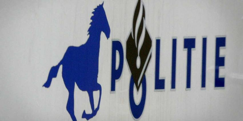 Vrouw rijdt met auto tegen politiepaard en rijdt door