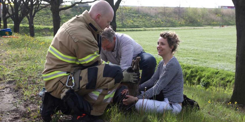 ree-omstander-redding-brandweer