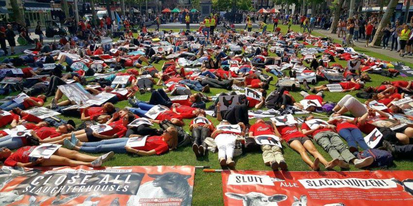 Zo'n honderd mensen demonstreren tegen de slacht