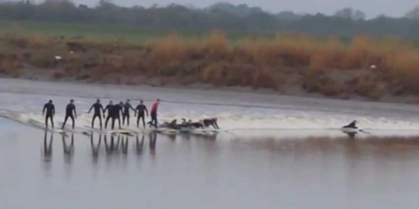 Surfen tegen de stroming van de rivier in