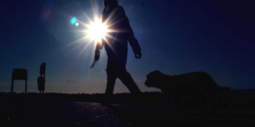 hond-uitlaten-tegenlicht