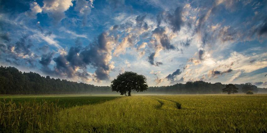 Lucht met wolken