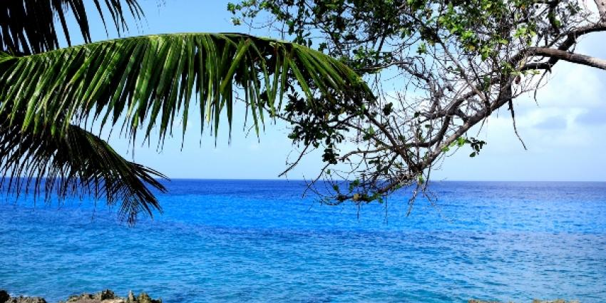Foto van tropischeiland   Sxc