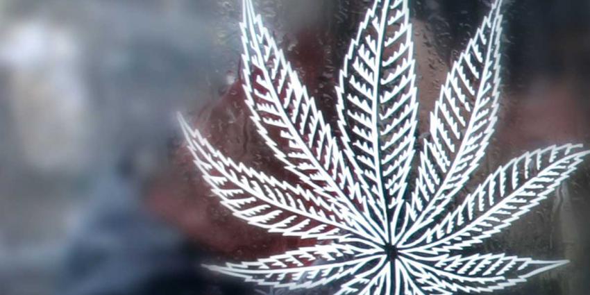 wiet-symbool-hennep-cannabis