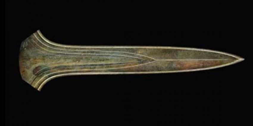 Museum koopt iconisch prehistorisch reuzenzwaard