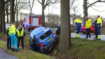 Vrouw botst met auto tegen lantaarnpalen en boom