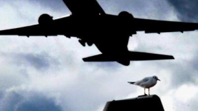 Foto van vliegtuig | Archief FBF.nl