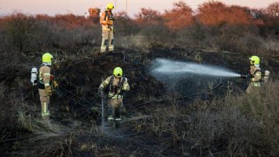 Duinen in brand Hoek van Holland