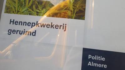 Hennepplantage geruimd in Almere