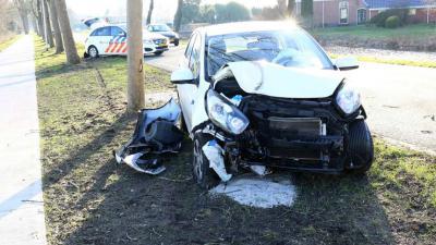Automobilist onder invloed knalt tegen boom