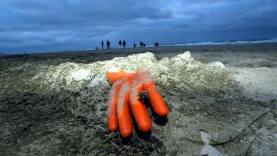 Record aan afval opgeruimd op Nederlandse stranden
