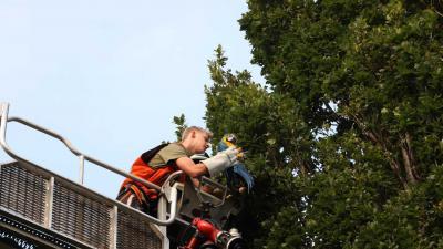 ara-boom-hoogwerker