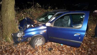 Automobiliste gewond na frontale botsing op boom bij Coevorden