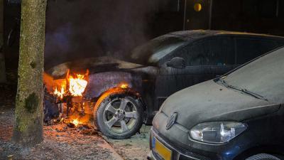autobrand