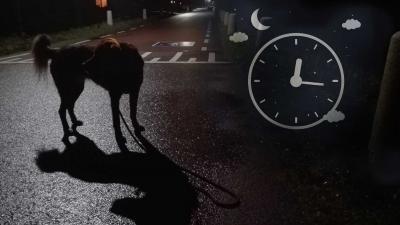 avondklok-hond-uitlaten-corona