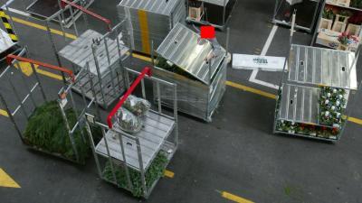 Italiaanse maffia tientallen jaren actief op Aalsmeerse bloemenveiling