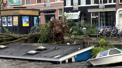 Foto van omgewaaide boom op woonboot | BON