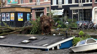 Foto van omgewaaide boom op woonboot   BON