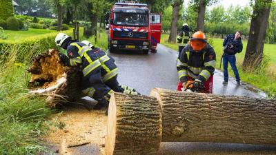 Flinke boom in Boxtel bezwijkt door storm