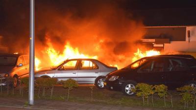 Zes auto's in vlammen op bij autobedrijf in Hoogeveen