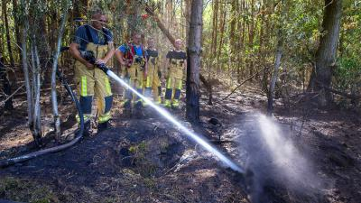 Opnieuw brand in bossen nabij Oude Sonsedijk in Best