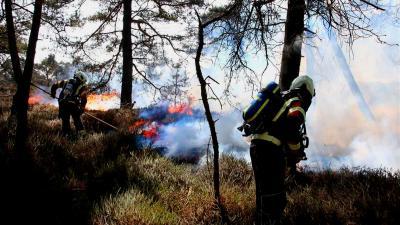 Grote natuurbrand op heide bij Gasselte
